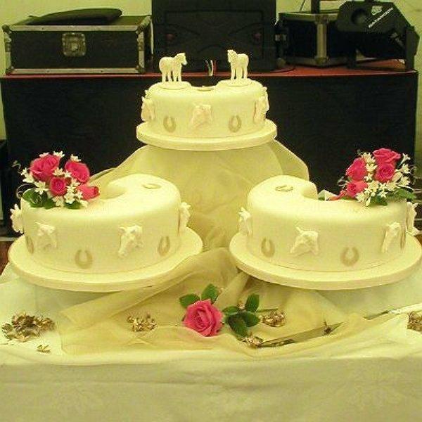 North Devon Cantel Cakes Seasons